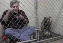 Vétérinaire incite un chien maltraité à se nourrir