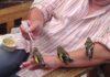 L'homme aux petits oiseaux affamés