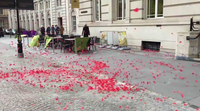 Valse tourbillonnante du vent dansant avec des pétales rouges