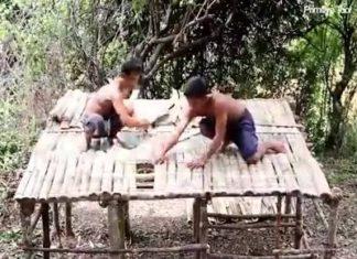 Ouvriers géniaux construisent une maison dans la forêt