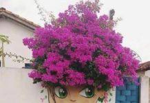 Street art, les beaux cheveux originaux !
