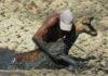 Un homme sauve un impala empêtré dans de la boue