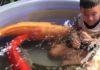 4 gros poissons se font caresser par un enfant