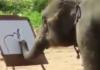 Un éléphant dessine un éléphant